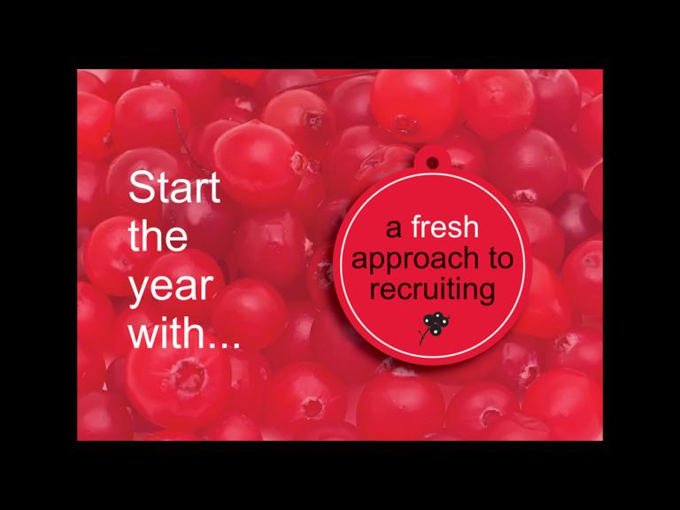 redberry-airfreshener-promotional